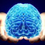 mitos-cerebro0_0