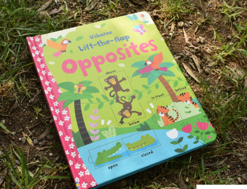 """Lift-the-flap opposites"" at Usborne Children´s Book"