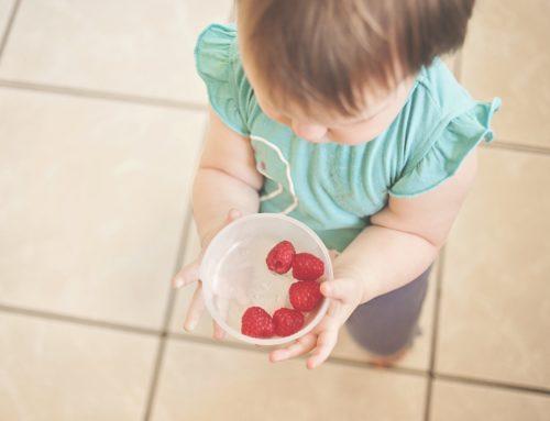 Alimentación y desarrollo cognitivo.