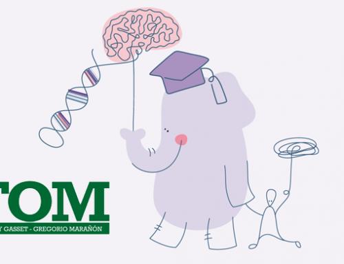 La Fundación Querer y la Fundación José Ortega y Gasset–Gregorio Marañón firman un acuerdo de colaboración que promoverá prácticas para estudiantes norteamericanos en áreas como la neurología.