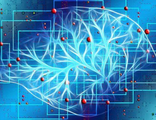 Los escáneres de resonancia magnética revelan cómo el cerebro protege los recuerdos.