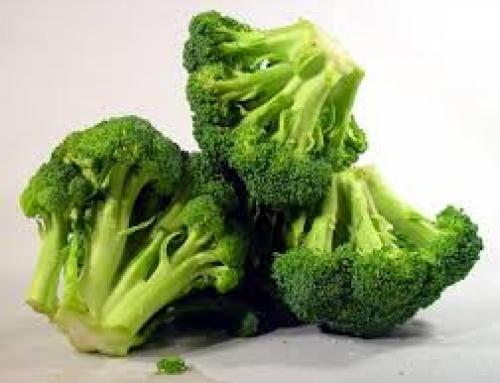 Un componente de los brotes de brócoli puede restaurar el desequilibrio de la química cerebral relacionado con la esquizofrenia