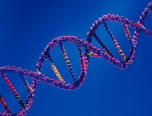 Agente experimental ofrece la primera esperanza para un trastorno genético raro.