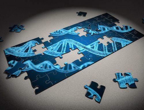 Alta tasa de mutaciones recurrentes De Novo en las encefalopatías del desarrollo y epilépticas