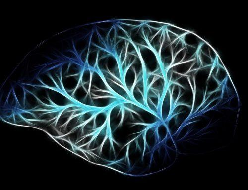 Las anomalías en los niveles de glucosa en el lóbulo frontal pueden indicar un mayor riesgo de SUDEP