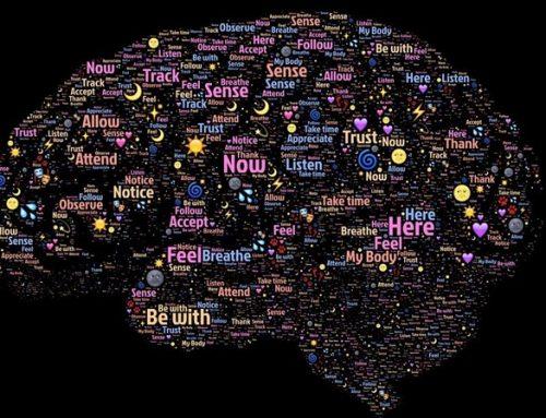 Por qué la neuroplasticidad es el ingrediente secreto para niños con necesidades especiales